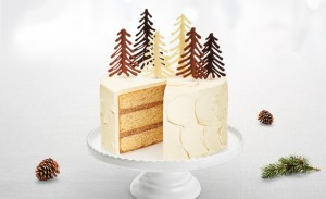 fpaq_photos_web_640x390_gateau_sapin
